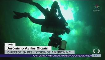 Cenotes de Yucatán resguardan flora y fauna con historia