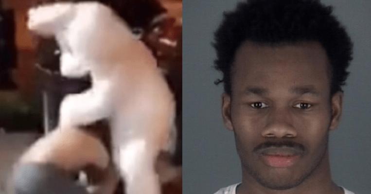 FOTO Un hombre disfrazado de conejo de Pascua defiende a golpes a una mujer agredida en Florida (FOX News)