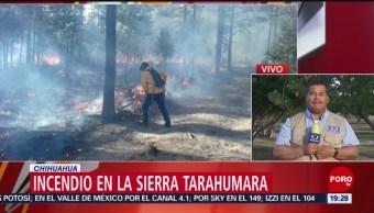 Foto: Controlan Incendio Municipios Sierra Chihuahua 23 de Abril 2019