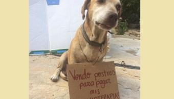 foto Él es 'Deko', el perito que vende postres para pagar sus quimioterapias 4 abril 2019