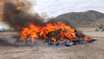 Foto: Incineran más de 10 toneladas de marihuana en Coahuila. 12 de abril 2019. Twitter @FGRMexico