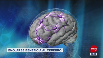 FOTO: Extra, Extra: Enojarse beneficia al cerebro, 18 abril 2019
