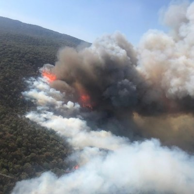 Activan alerta atmosférica en Guadalajara por incendio en Bosque de la Primavera