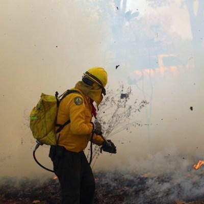 Aumentan incendios por calor y quemas forestales en Campeche