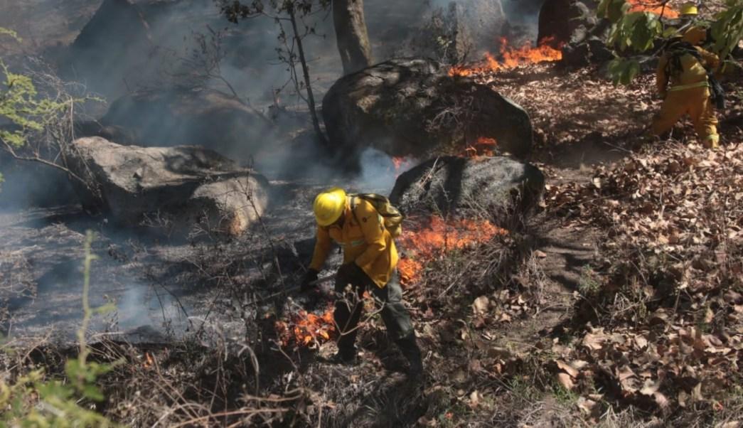 Se registra incendio en cerro del Taray, en Zapopan