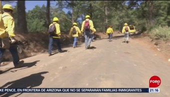 Foto: Brigadistas Volcan Popocatépetl Incendios Forestales 11 de Abril 2019