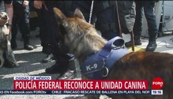 Foto: Policía Federal Reconoce Unidad Canina 16 de Abril 2019