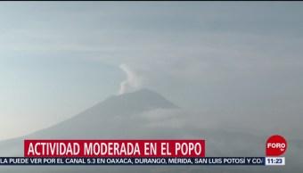 FOTO: Popocatépetl amanece con actividad moderada y continua, 6 de abril 2019