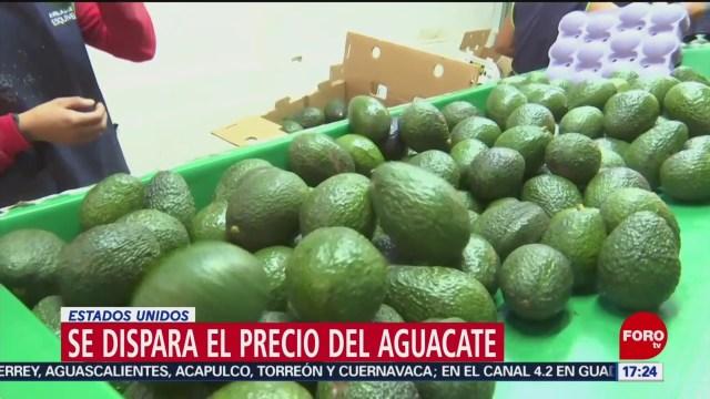 Foto: Precios Aguacate Mantienen Estables México 3 de Abril 2019