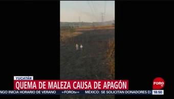 Foto: Quema De Maleza Causa Apagón Península Yucatán 5 de Abril 2019