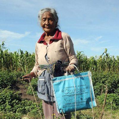 Todos los adultos mayores recibirán parejo 2 mil 550 pesos: AMLO