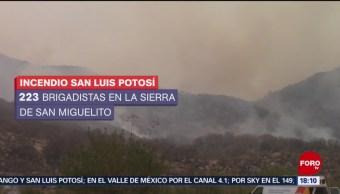 FOTO: 102 incendios aquejan a 17 estados mexicanos