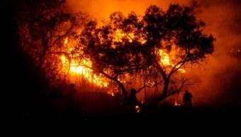 31% de incendios forestales en 2019, intencionales: Conafor