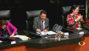 Foto: Senado Aprueba Reforma Educativa 9 de Mayo 2019