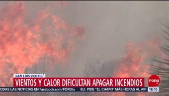 FOTO: Altas temperaturas dificultan extinguir incendios forestales en SLP, 12 MAYO 2019