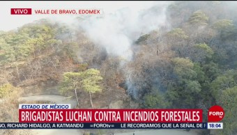 FOTO: Brigadistas combaten incendio en Valle de Bravo