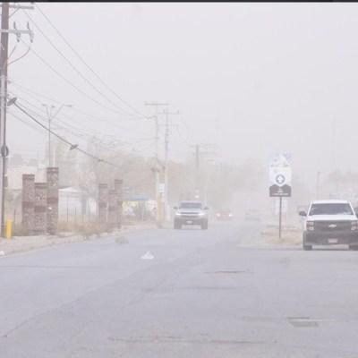 Fuertes vientos tiran dos árboles en Chihuahua; emiten alerta amarilla