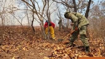 Foto: Combate de incendio forestal en Tixtla, Guerrero, 21 de abril 2019. Twitter @PC_Guerrero