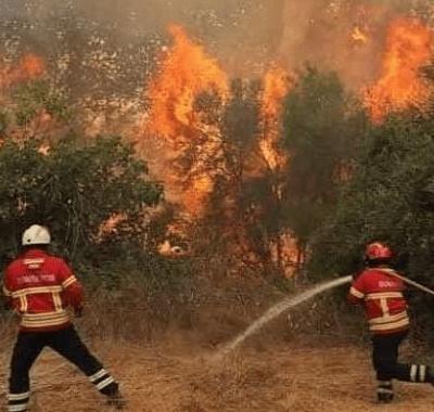 Incendio sigue activo hoy en la Sierra Gorda de Querétaro