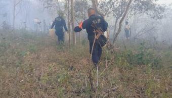 Emiten declaratoria de emergencia para 11 municipios de Oaxaca afectados por incendios forestales