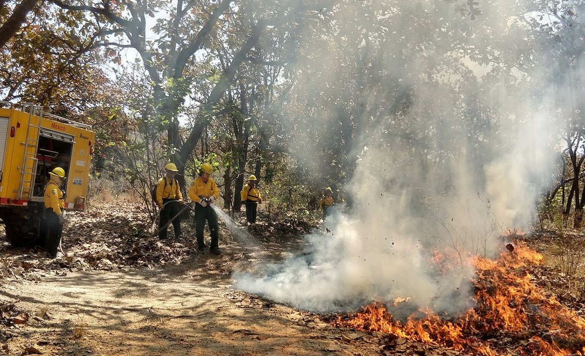 Foto: Combate de incendios forestales, 2 de mayo 2019. Twitter @CONAFOR