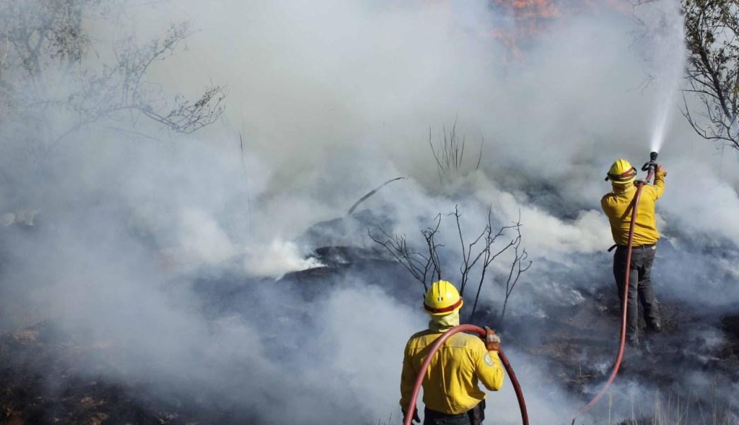 Foto: Declaran emergencia para 27 municipios de Guerrero por incendios, 18 mayo 2019