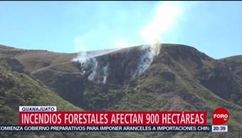 FOTO: Incendios forestales afectan 900 hectáreas en Guanajuato, 11 MAYO 2019