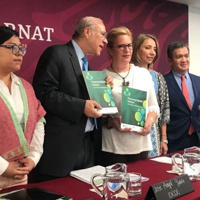 OCDE: México debe garantizar cuidado al medio ambiente