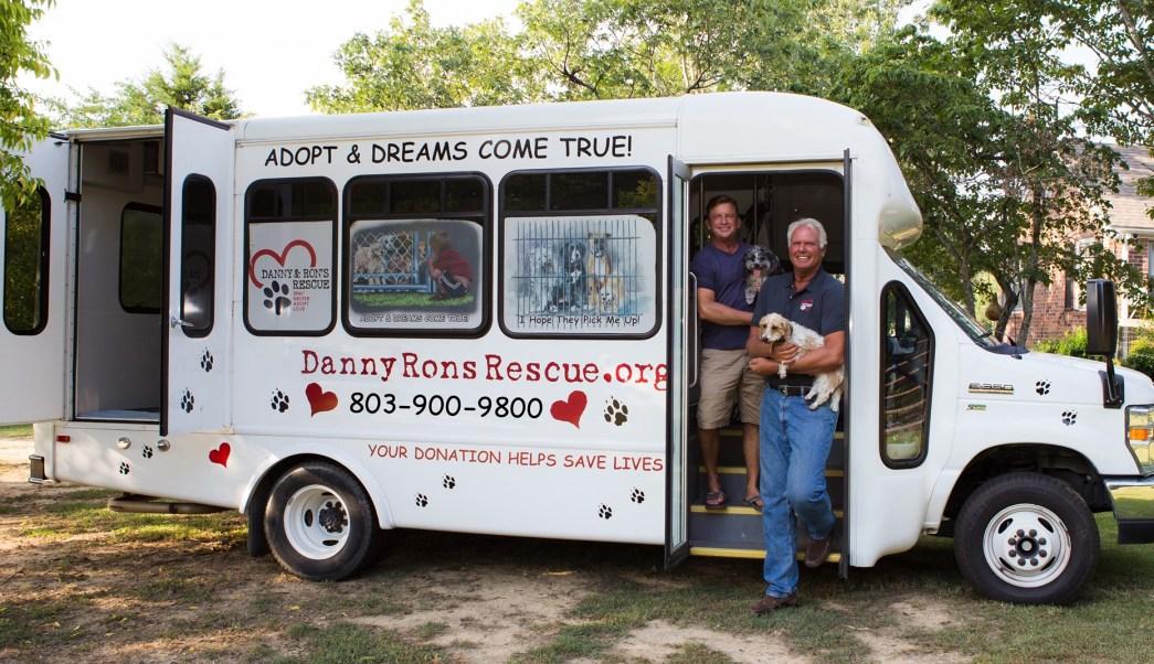 foto Pareja gay ha rescatado más de 11 mil perros 3 mayo 2019