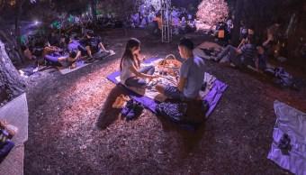 foto No te pierdas el próximo Picnic Nocturno en Chapultepec y en Aragón 31 mayo 2019