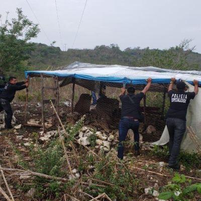 Recuperan tres predios invadidos ilegalmente desde 2012, en Chiapas