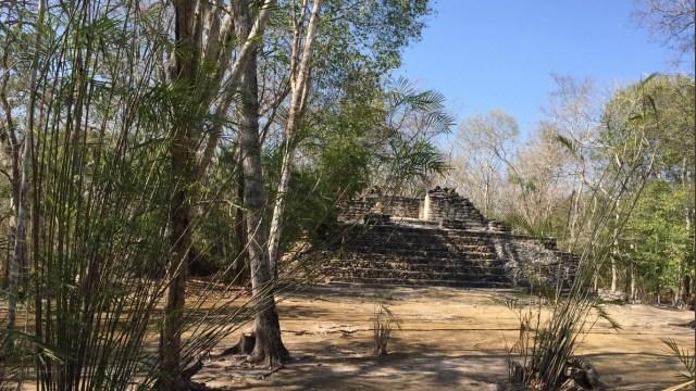 Foto: Reserva de Balamkú, Campeche, 15 de abril 2017. Twitter @Geraldina_GV