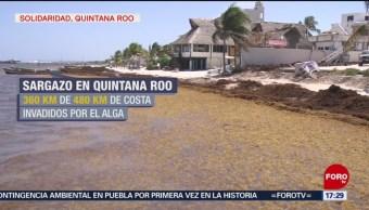FOTO: Riviera Maya, invadida de sargazo y sin mar en la costa