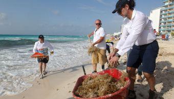 Foto: Voluntarios limpian el sargazo de las playas de Cancún, en Quintana Roo, 22 mayo 2019