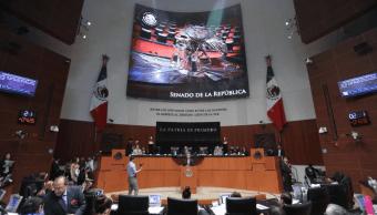 Senado busca integrantes para órgano de mejora educativa