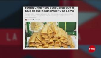 Foto: Tamales Encuerados Paparrucha Del Día 3 de Mayo 2019