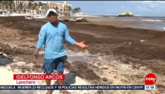 FOTO: Turismo se ve afectado por toneladas de sargazo en Quintana Roo, 26 MAYO 2019