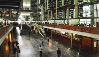 Foto Biblioteca Vasconcelos 15 Junio 2019