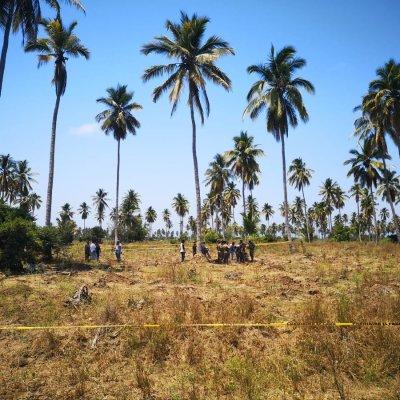 Localizan 10 cuerpos en 4 fosas clandestinas en Colima