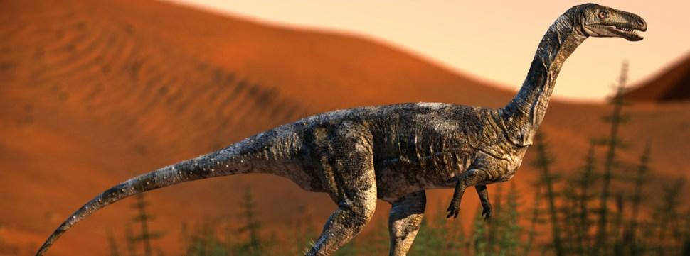 foto dinosaurio descubiero en brasil 27 junio 2019