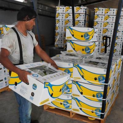 AMLO resalta creación de 10 mil empleos en México en primeros 5 días de agosto