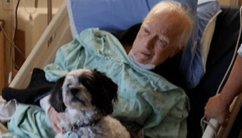 Foto Hospital Mascotas 21 Junio 2019