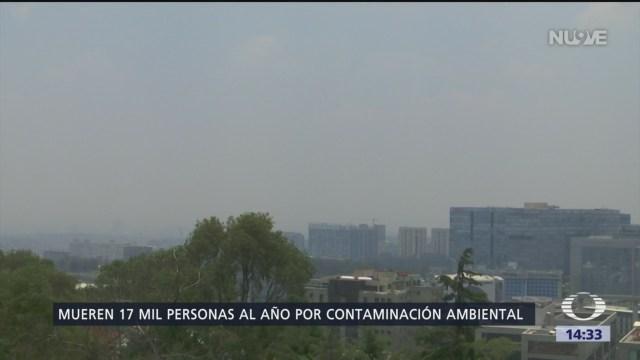 Foto: Los daños ambientales en México