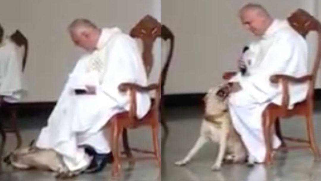 Foto perro muerde túnica de sacerdote durante la misa 18 junio 2019