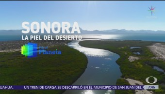 Por el Planeta: Sonora, entre el desierto y la Isla Tiburón