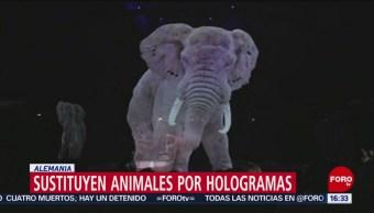 Foto: Sustituyen animales por hologramas en circo de Alemania