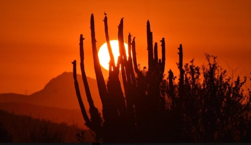 Foto: Protección Civil de Sonora emite alerta para los municipios de la entidad por una intensa ola de calor acompañada de ráfagas de viento caliente, julio 6 de 2019 (Facebook: Imagenes Sonorenses)
