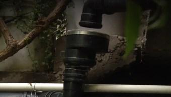 Ecotecnología permite recolectar agua en temporada de lluvias en Xochimilco e Iztapalapa