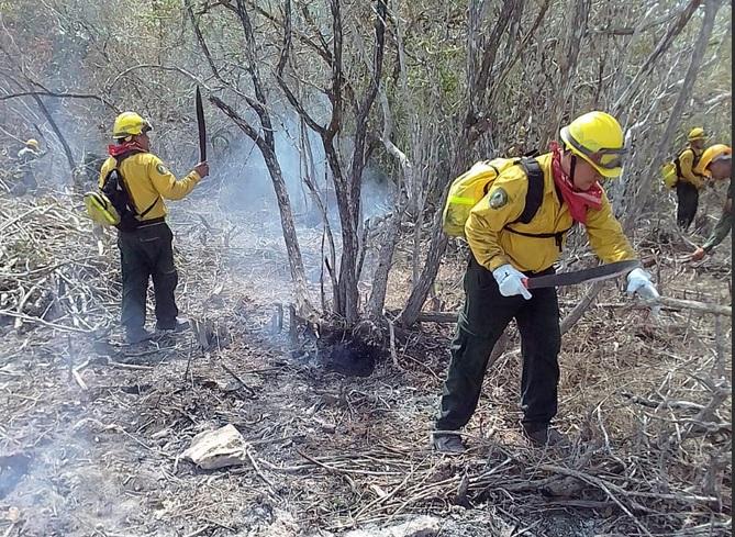 Incendio forestal en Reserva de la Biosfera Sian Ka' an.