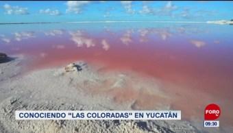 """Conociendo """"Las coloradas"""", en Yucatán"""